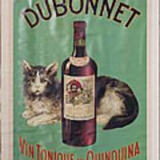 Dubonnet Wine Tonic Dsc05585 Art Print