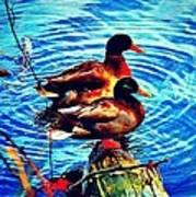Ducks On A Log Art Print