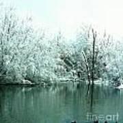 Ducks On A Snowy Pond Art Print