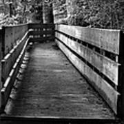 Dukes Creek Falls Walkway Art Print