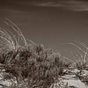 Dune And Blue Sky Art Print