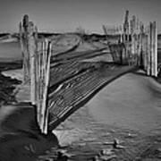 Dune Erosion Fence Outer Banks Nc B And W Img_3761 Art Print