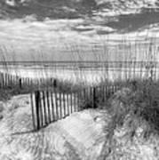 Dune Fences Art Print