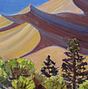 Dune Field Art Print by Susan McCullough