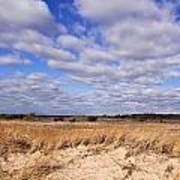 Dune Grass And Clouds Art Print