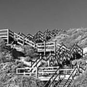 Dune Steps 03 Art Print