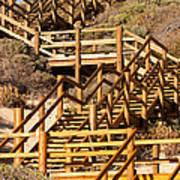 Dune Steps 06 Art Print