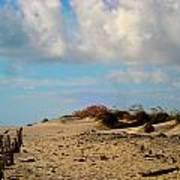 Dunes At Obx Art Print