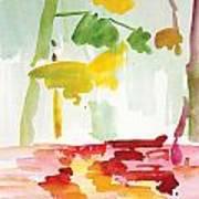 Dunnfield-creek-92013-16x12 Art Print