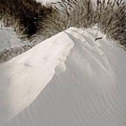 Duotone Dune Art Print