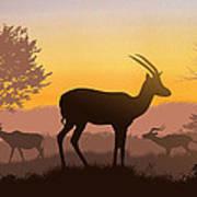 Dusk In Kenya Art Print