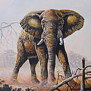 Dusty Jumbo Art Print