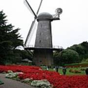 Dutch Windmill In Golden Gate Park Art Print
