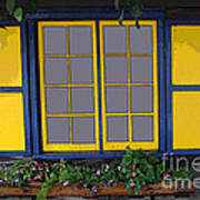 Dutch Window Art Print