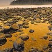 D.wiggett Rocks On Beach, China Beach Print by First Light