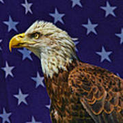 Eagle In The Starz Art Print