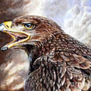 Eagle Cry Art Print