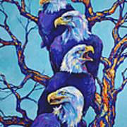 Eagle Tree Art Print