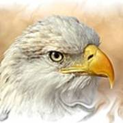 Eagle6 Art Print by Marty Koch