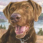 Earl Art Print by Anne Gifford
