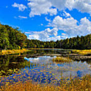 Early Autumn At Fly Pond - Old Forge New York Art Print