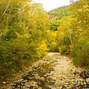Early Autumn On Seneca Creek Wv Art Print
