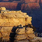 Early Light In The Canyon Art Print