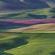 Early Light In The Palouse Art Print