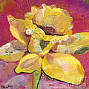 Early Spring IIi  Daffodil Series Art Print