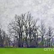 Early Spring Landscape  Digital Paint Art Print
