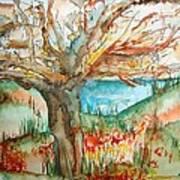 Early Winter Tree Art Print