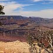 East Rim Grand Canyon Art Print