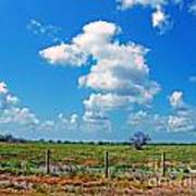 East Texas View Art Print