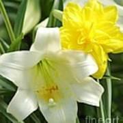 Easter Flowers Art Print