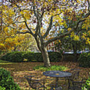 Easton Garden Art Print