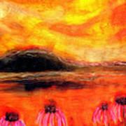Echinacea Sunset Art Print