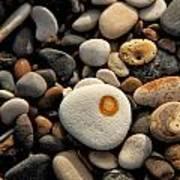 Egg Pebble Art Print