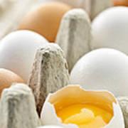 Eggs In Box Art Print by Elena Elisseeva