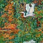 Egret Reflections Art Print