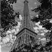 Eiffel Through Trees Bw Art Print