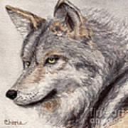 El Lobo Art Print by Vikki Wicks
