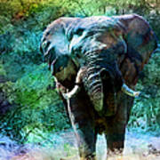 Elephant - Featured In Comfortable Art- Wildlife- And Nature Wildlife Groups Art Print