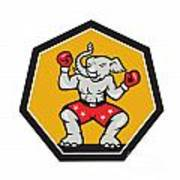 Elephant Mascot Boxer Cartoon Print by Aloysius Patrimonio