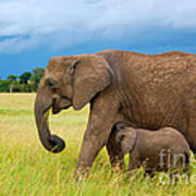 Elephants In Masai Mara Art Print