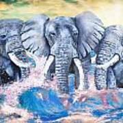 Elephants In The Tide Print by Tara Richelle
