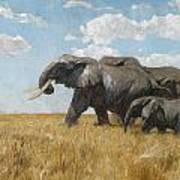 Elephants On The Move Art Print