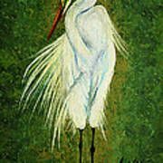 Ellie Egret Art Print by Adele Moscaritolo