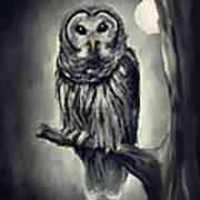 Elusive Owl Art Print