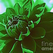 Emerald Green Beauty Art Print