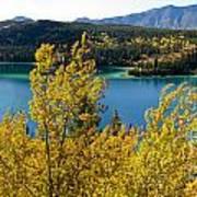 Emerald Lake At Carcross Yukon Territory Canada Art Print